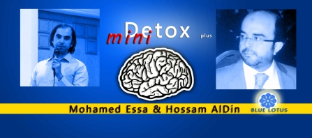 mohamed essa mini detox plus